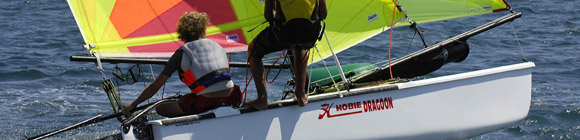 Hobie Dragon Banner