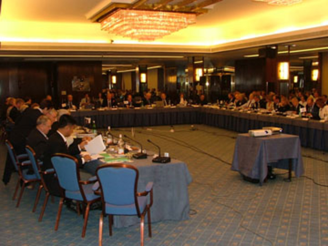 The ISAF Council