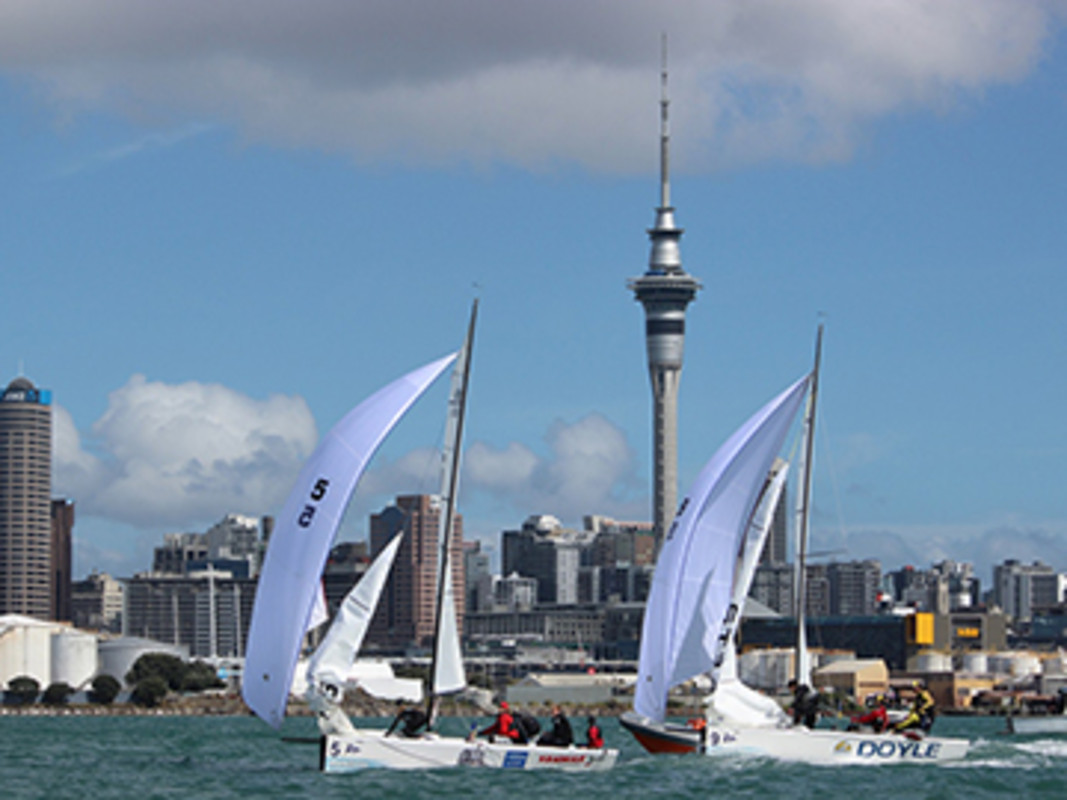 Junior leads Steele under the Auckland backdrop
