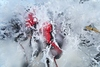 Volvo Ocean Race sailors ready to tackle Southern Ocean